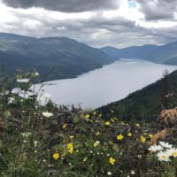 do 500 km / Adams Lake