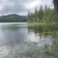 do 500 km / Johnson Lake